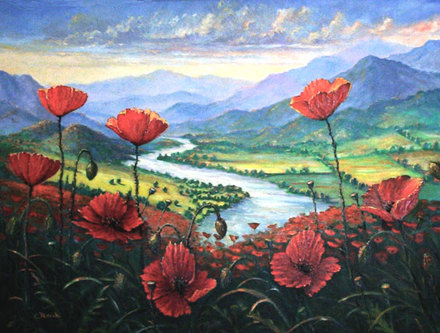 Poppies river valley provence france landscape