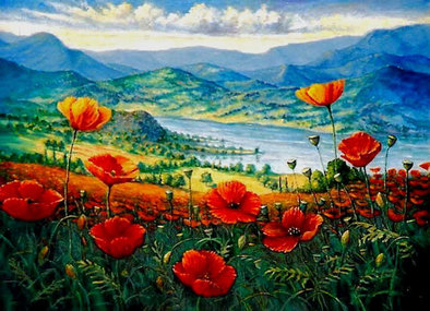 Poppies at the river landscape provence france